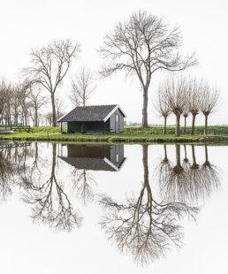 Edam reflections